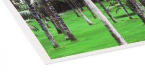 FineArt-Papier - Hahnemühle Photo Rag