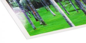 Posterpapier glanz