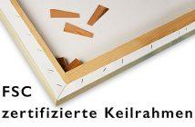 Foto-auf-Leinwand-mit-FSC-zertifitiertem-Holzkeilrahmen